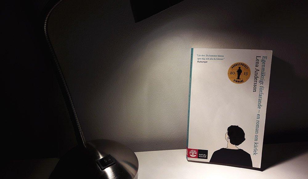 Lena Andersson Widerrechtliche Inbesitznahme ein Roman über Liebe