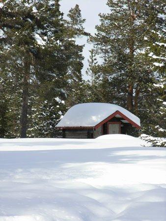 Winterpracht im Fulufjäll in Dalarna
