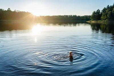 Wälder und Seen prägen Schweden