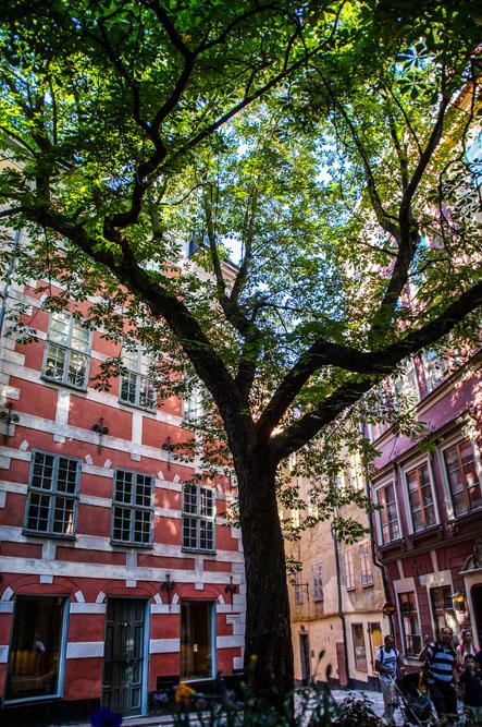Lieblingsplatz in Stockholm