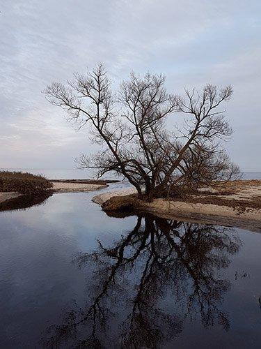 Natur in Schweden - einfach traumhaft