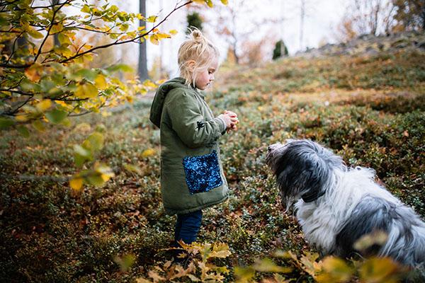 Mit dem Hund im Wald in Schweden