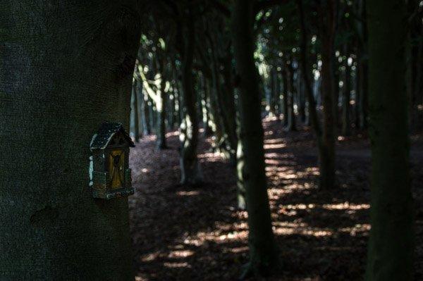 Der Sagenwald von Sofiero