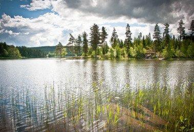 Nachhaltig nach Schweden reisen