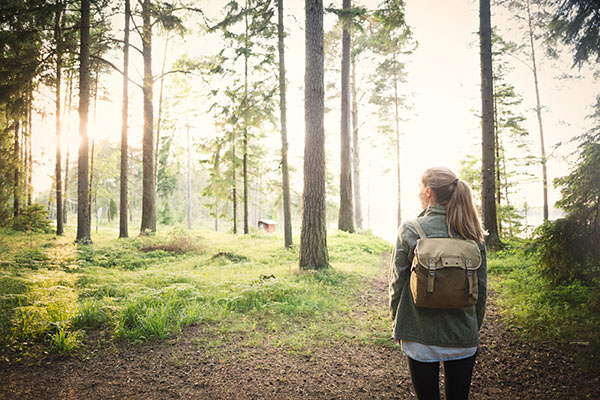 Wandern in Tandövala