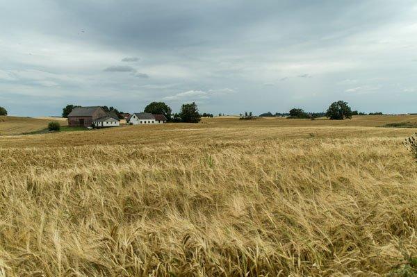Typische Landschaft in Skåne